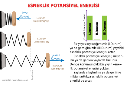 Sıkıştırılan ya da Gerilen Yaylarda Esneklik Potansiyel Enerjisi Bulunur