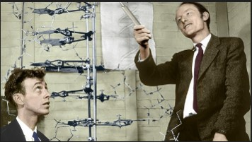 FRANCIS CRICK(Fransis Krik) ve JAMES WATSON